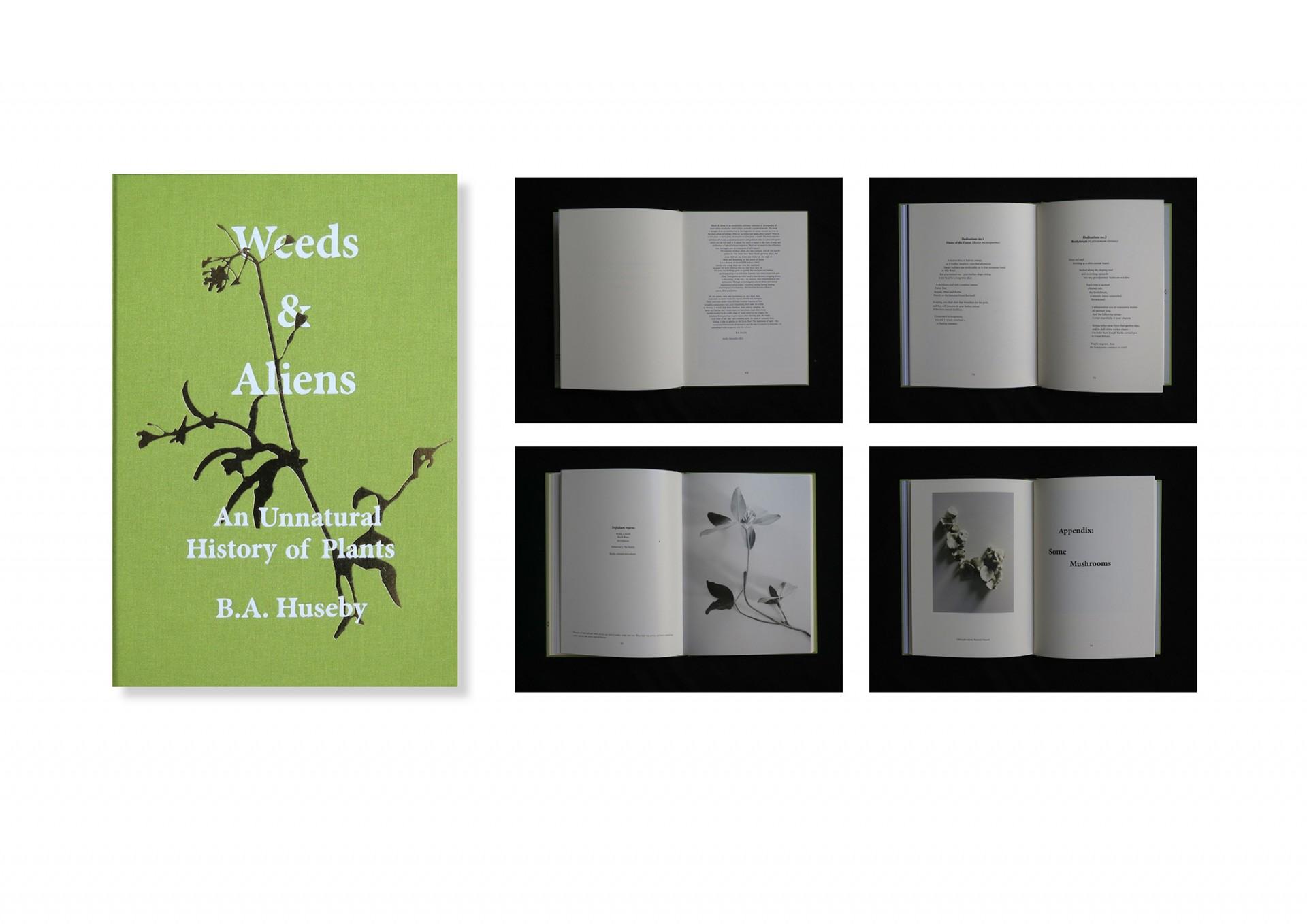 Rupert Smyth Studio Weeds & Aliens